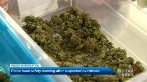 2 teens overdose smoking third party 'cannabis'